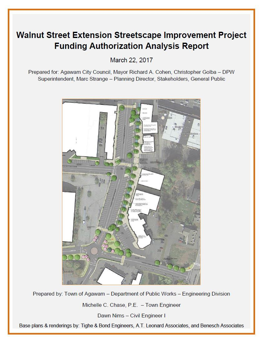 Walnut Street Extension Streetscape Improvement Project Funding Authorization Analysis Report cover